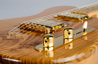 Prieger custom guitars